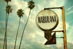 An Employers Guide to Drug Testing and Drug-Free Workplaces in the Era of Legal Marijuana